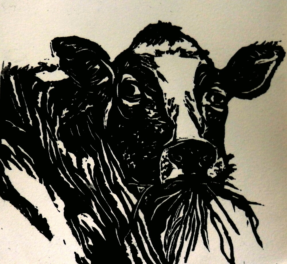 Cow by Sarah Jeffrey