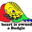 My heart belongs to a green budgie by lifewithbirds