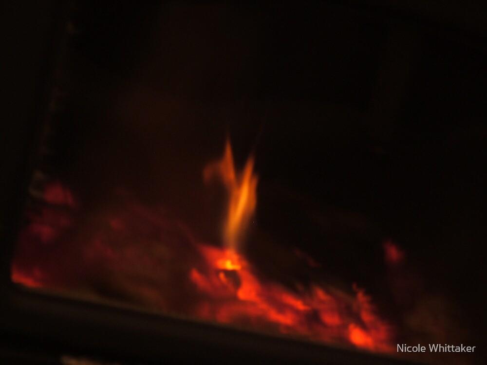 Fire Rabbit by Nicole Whittaker