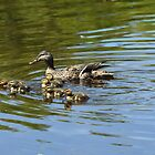 Six little minions & mama _ Mallards by Poete100
