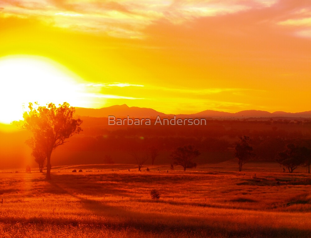 The End Is Near by Barbara Anderson