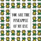 You Are The Pineapple Of My Eye by shutupchloe