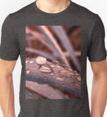 rain drop on lemongrass macro T-Shirt