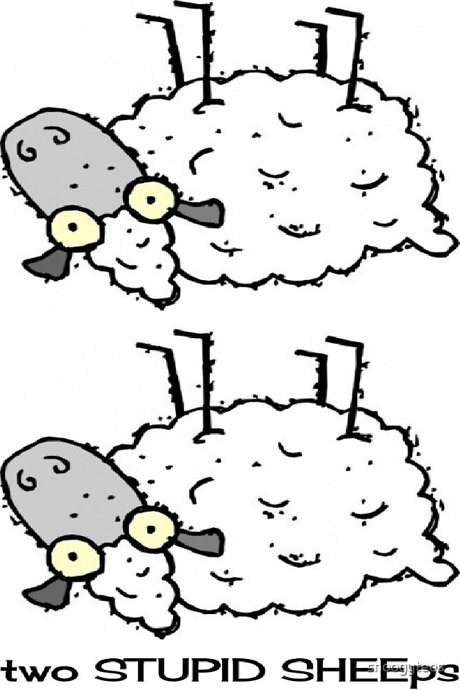 Two Stupid Sheeps by snoogytees