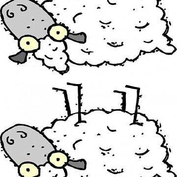 Two Stupid Sheeps by snoogytees