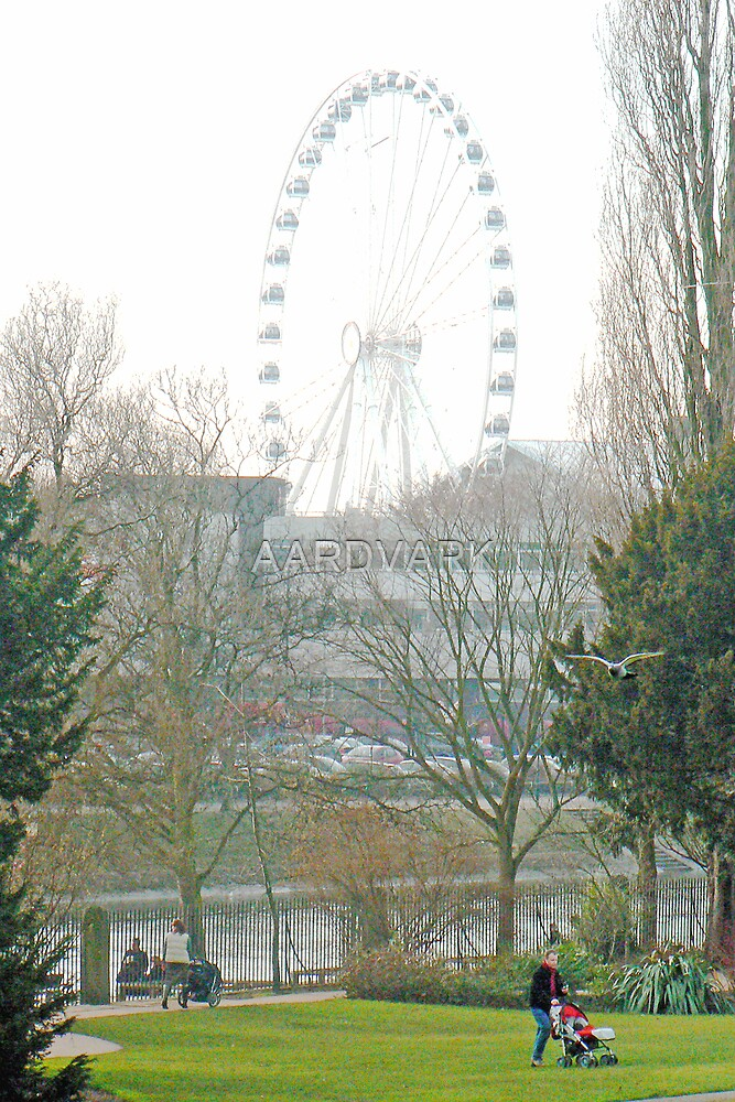 The Yorkshire Wheel by AARDVARK