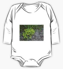 HDR Composite - Wee Green Plant Gravel and Grass One Piece - Long Sleeve