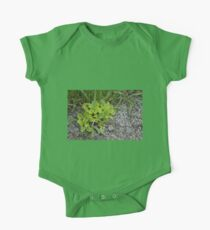HDR Composite - Wee Green Plant Gravel and Grass Kids Clothes