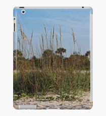 The Price is Sweet iPad Case/Skin