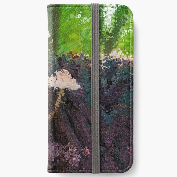 Dissolution 16 iPhone Wallet