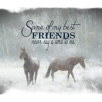 horse friendship by tiffanyo