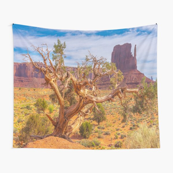 Monument Valley, USA Tapestry