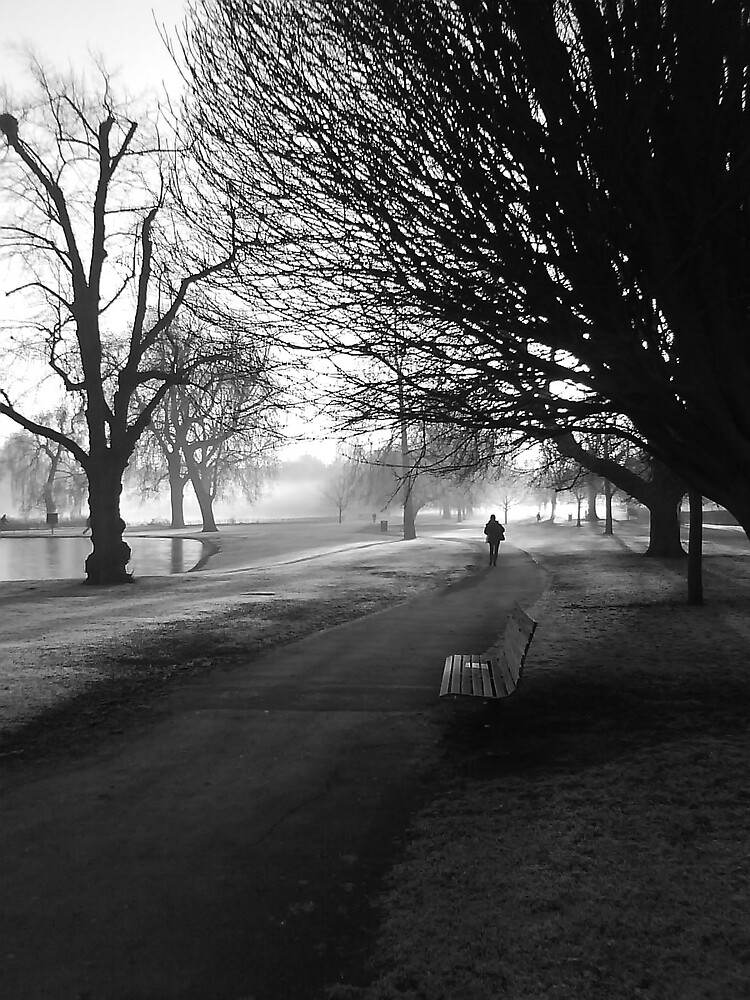 Frosty dawn bench and walk by Vincent Smith