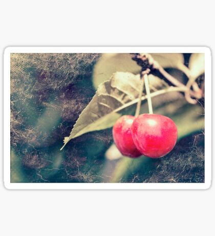 A pair of cherries Sticker