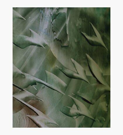 Encaustic Art Cosmic Birds  Photographic Print