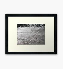 Splashback Framed Print