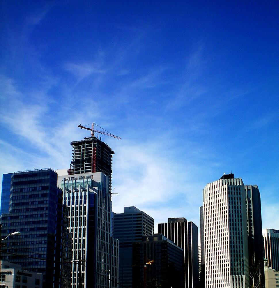 city swirl by prescott mccarthy