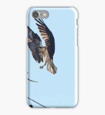 Ospreys I iPhone Case/Skin