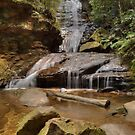 Empress Falls With Rocks by Michael Matthews