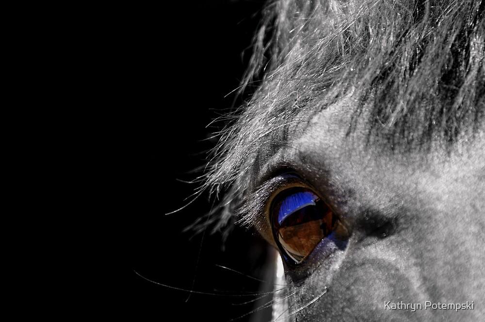 I Spy With My Little Eye by Kathryn Potempski