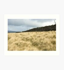 North Yorkshire Dales, UK Art Print