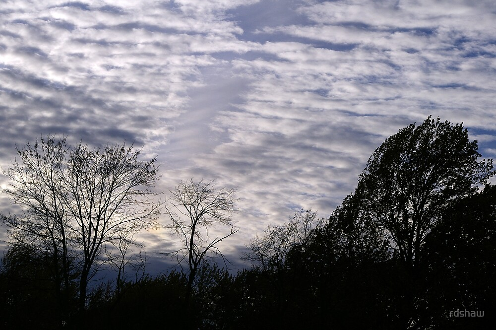 Mackerel Sky by rdshaw