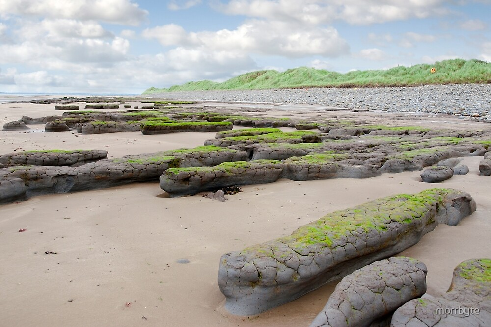 mud banks and dunes at Beal beach by morrbyte