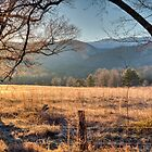 Cades Cove 2017 by Douglas  Stucky