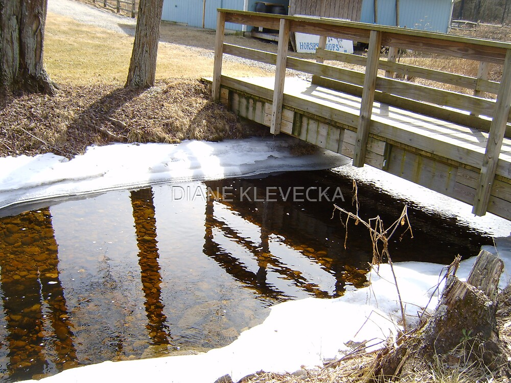 Winter's Relection by DIANE KLEVECKA