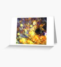 Lavender Orange Spiral Greeting Card