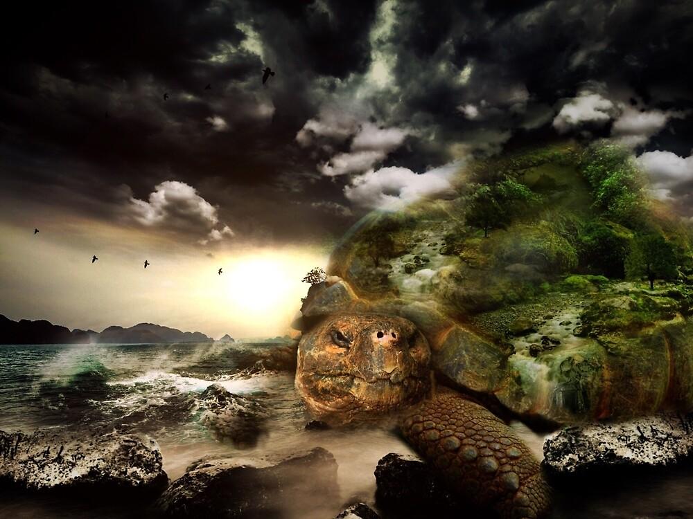 Fantasy turtle by franceslewis