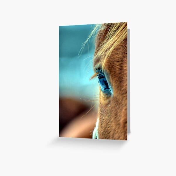 Horse Eye Greeting Card