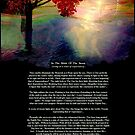 """""""In The Midst Of The Storm"""" [with story] by Bonnie Comella"""