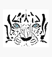 Eyes of the Tiger Photographic Print
