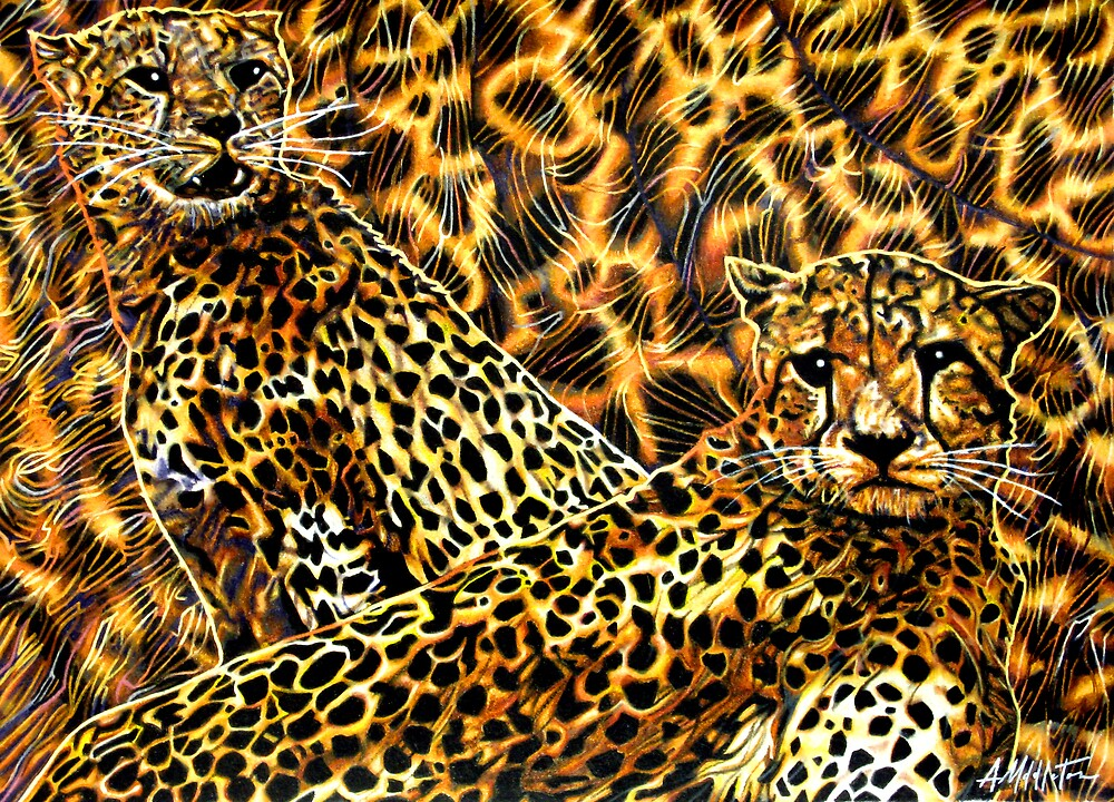 Cheetahs by Anthony Middleton