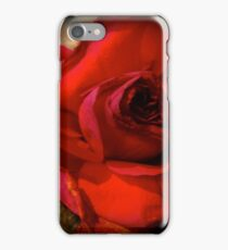 Red Rose 111 iPhone Case/Skin