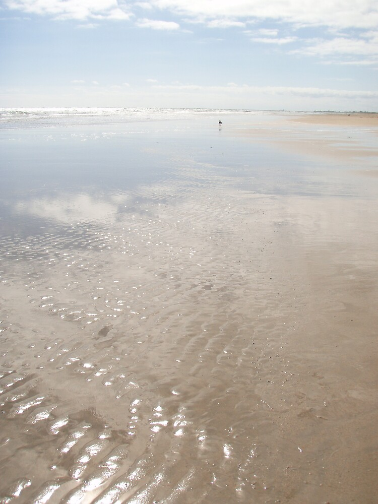 shimmering ripples on a peaceful sunny day at the beach by gaylene