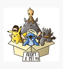 Pokemon Lilo and Stitch How to train your dragon Totoro Guardians of the Galaxy Fantastic beasts and where to find them Photographic Print