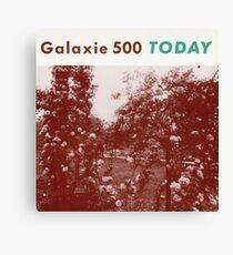 Galaxie Canvas Print
