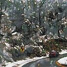 Vehicle in icy conditions by ashishagarwal74