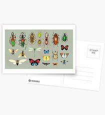 Die üblichen Verdächtigen - Insekten auf Grau - Aquarell Bugs Muster von Cecca Designs Postkarten