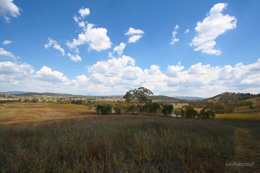 Mudgee NSW view west by sashawood