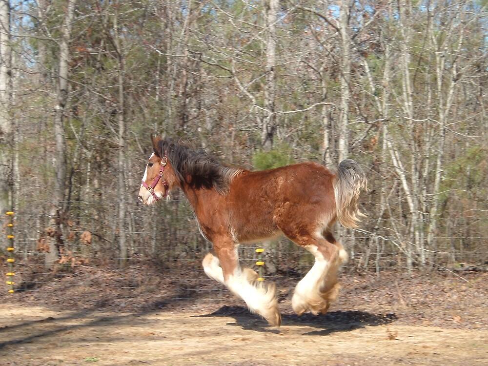 Aggie Having Fun In Alabama by karlvail