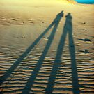 """Shadow of Love"" by technochick"