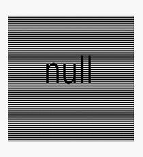 null Photographic Print