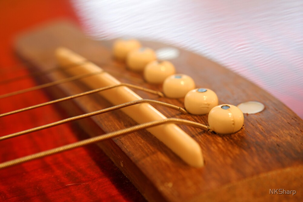 Close up of classical guitar, strings & pegs by NKSharp