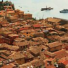 Rooftops of Malcesine by RedHillDigital