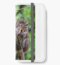 Wet Hair Day for the Squirrel iPhone Wallet