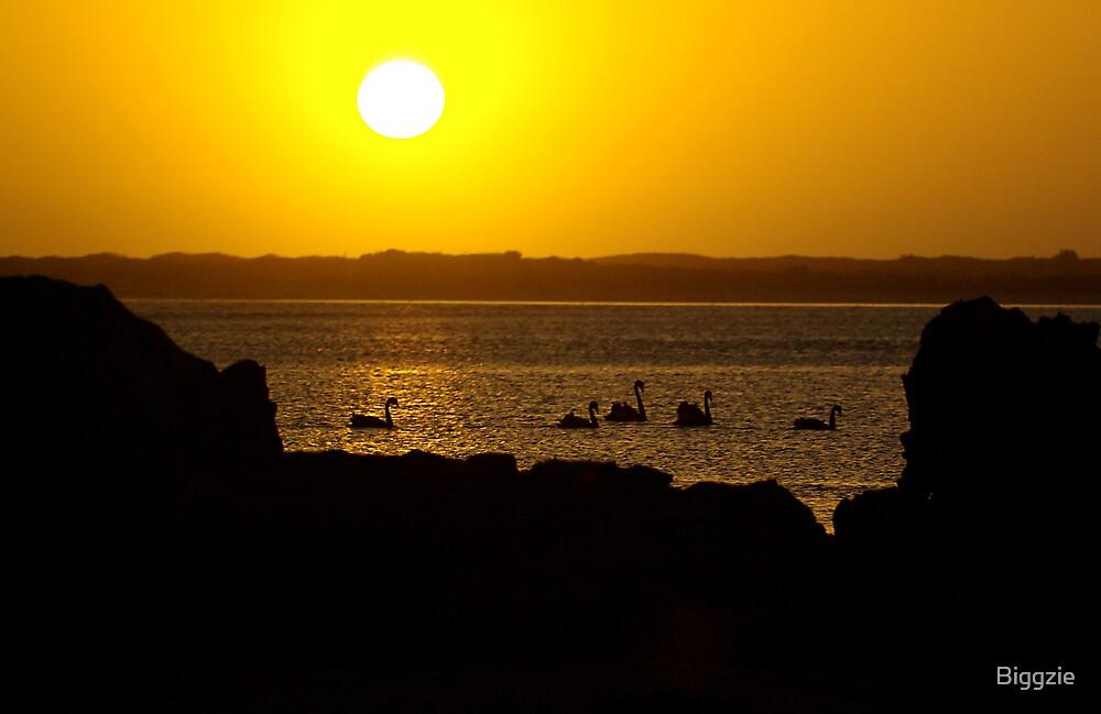 Nelson Sunset by Biggzie