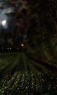 Dark Hours slept by Grant Wilson